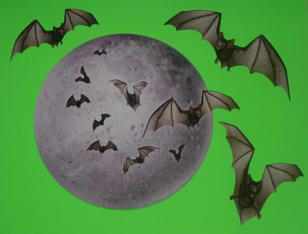 MOON & BATS DECORATION