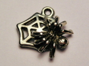 SPIDER ON WEB CHARM